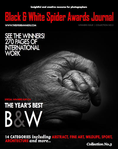 Rolf Walther Spider Awards